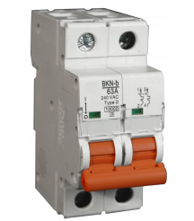 2 Pole Miniature Circuit Breaker